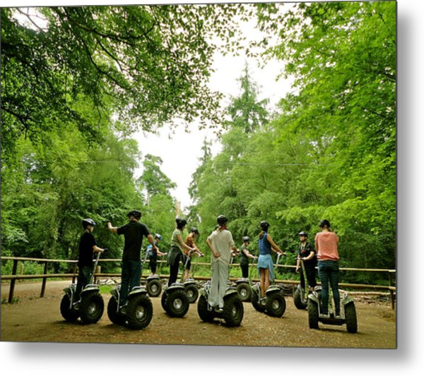 Forest Segway Metal Print