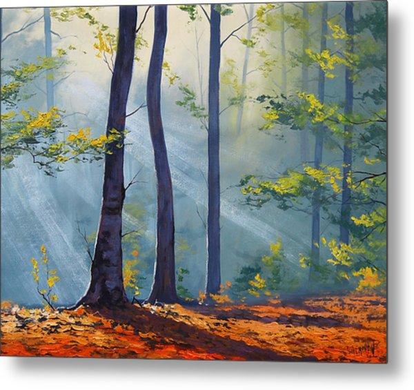 Forest Sunrays Metal Print