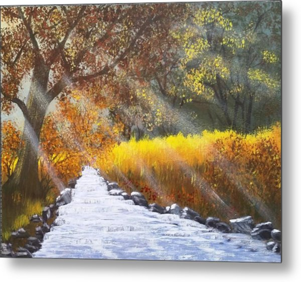 Forest Sunrays Over Water Metal Print