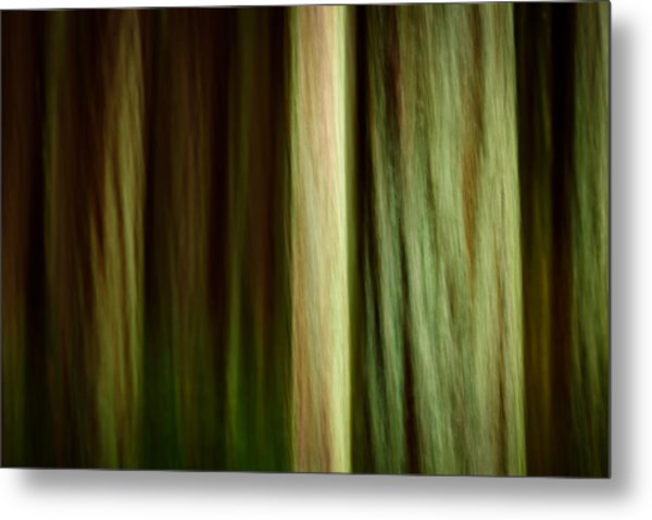 Forest Texture Metal Print