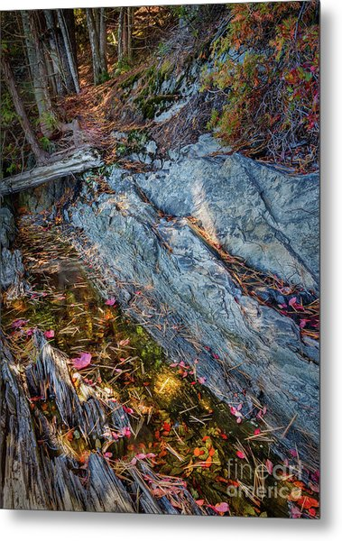 Forest Tidal Pool In Granite, Harpswell, Maine  -100436-100438 Metal Print