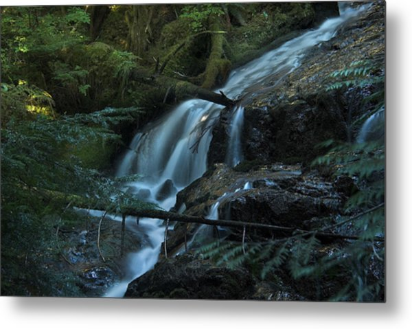 Forest Waterfall. Metal Print