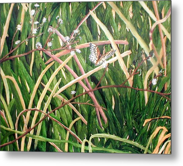 Fort Toulouse Butterfly Metal Print by Beth Parrish