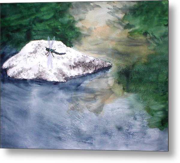 Fort Toulouse Dragonfly Metal Print by Beth Parrish
