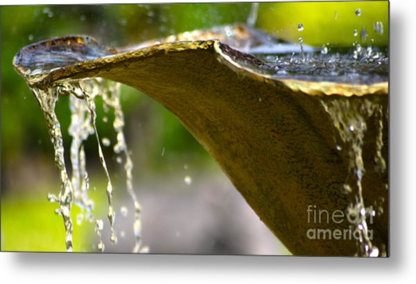 Fountain Bowl Metal Print