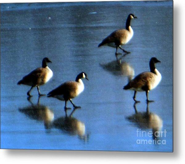 Four Geese Walking On Ice Metal Print