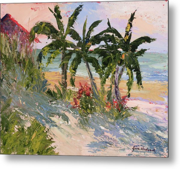 Four Palms Metal Print by Jane Woodward