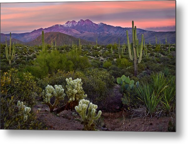 Four Peaks Sunset Metal Print by Dave Dilli