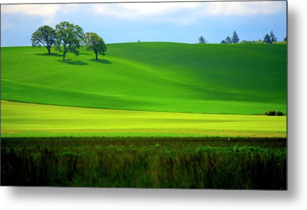 Four Trees On Livermore Road Metal Print