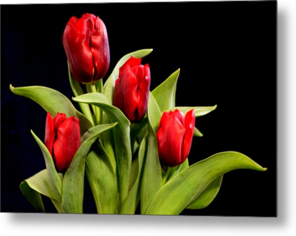 Four Tulips Metal Print