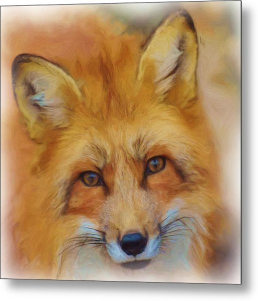Fox Face Taken From Watercolour Painting Metal Print