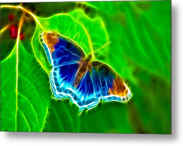 Fractal Butterfly Metal Print by Rich Leighton