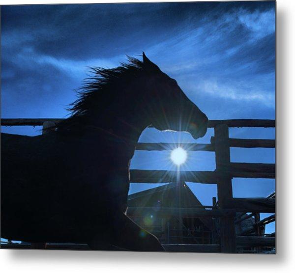 Free Spirit Horse Metal Print