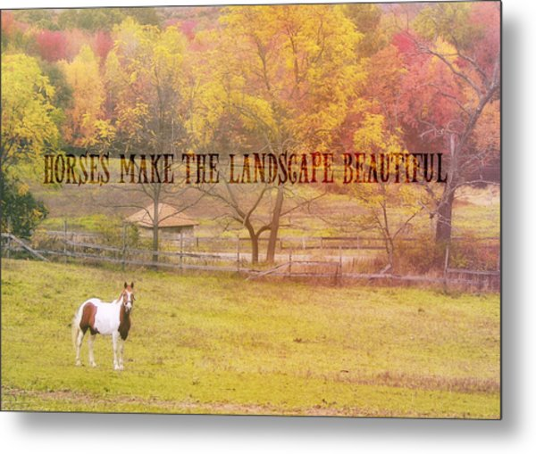 Freedom Farms Quote Metal Print by JAMART Photography