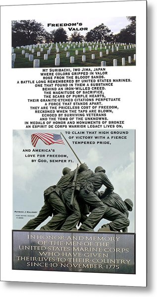 Freedom's Valor Metal Print by Patrick J Maloney