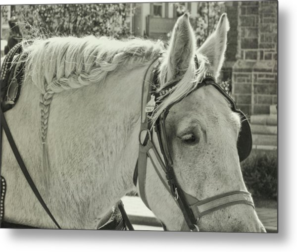 French Braided Gray Metal Print by JAMART Photography