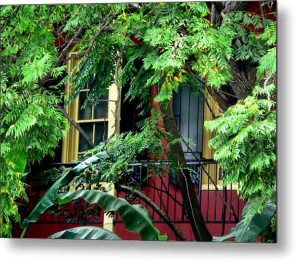 French Quarter Foliage  Metal Print