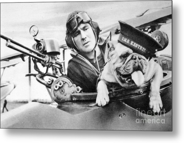 French World War Two Postcard Celebrating The British Bulldog As A Mascot For The Royal Air Force Metal Print
