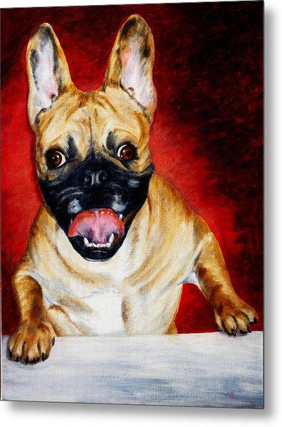 Frenchie With A Smile Metal Print by Karen Peterson