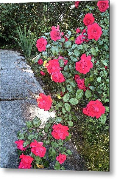 Fresco Roses Metal Print by Karen Fowler
