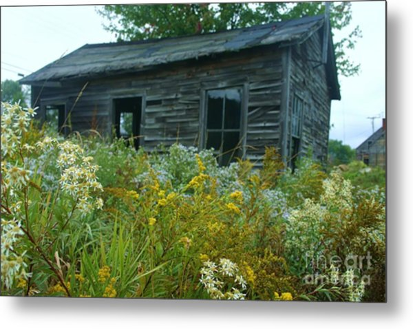 Fresh And Old Metal Print by Dennis Curry