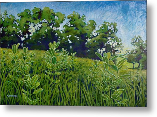 Fresh Field Metal Print