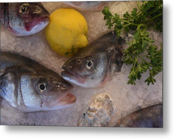 Fresh Fish Metal Print