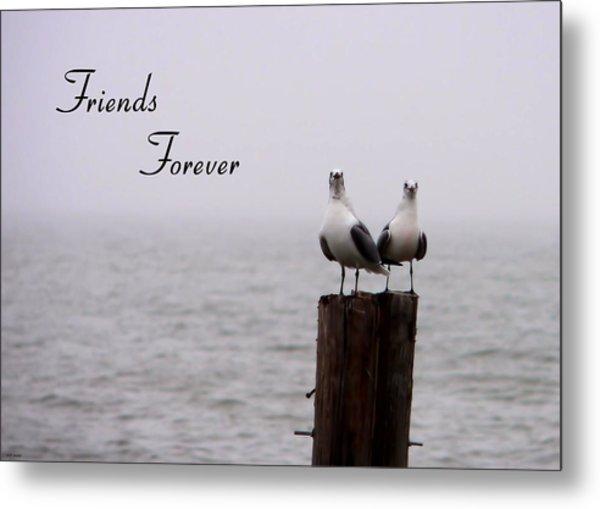 Friends Forever Metal Print