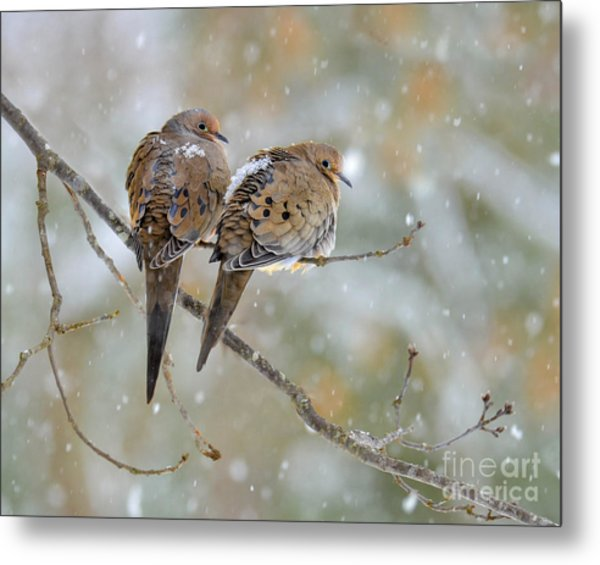 Friends Through The Storm Metal Print