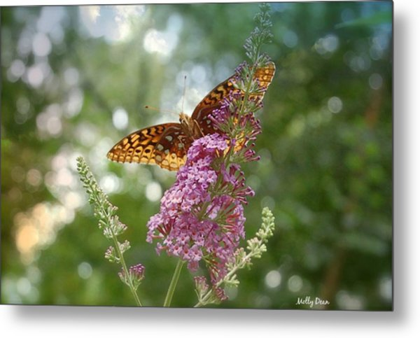 Fritillary Metal Print by Molly Dean
