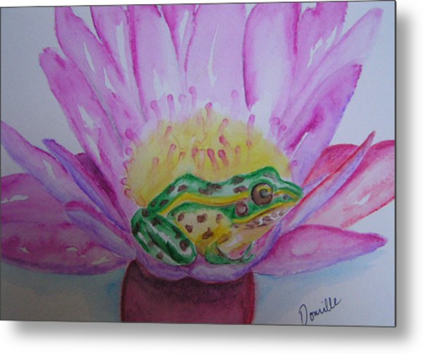 Frog Metal Print by Donielle Boal