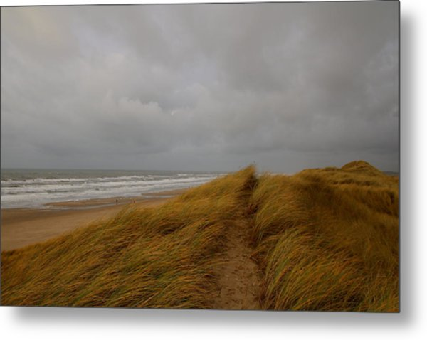 From Dunes To Sea Metal Print