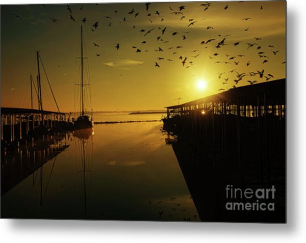 From Shadows Metal Print