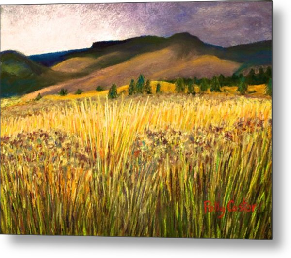 From Storm Into Sunshine Metal Print
