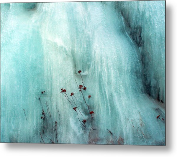 From The Ice... Metal Print