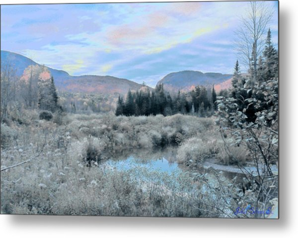 Frost On The Bogs Metal Print