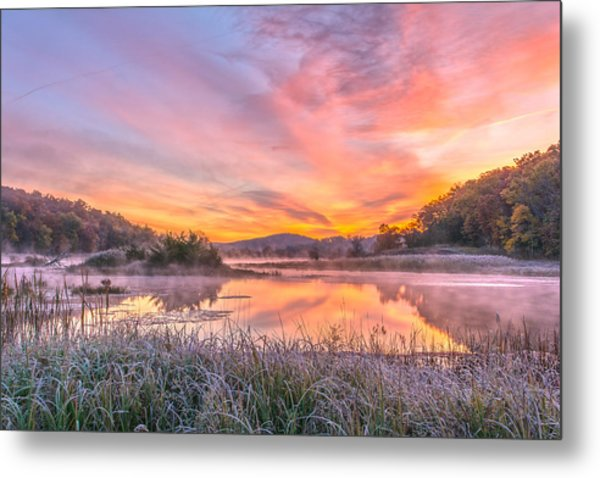 Frosted Dawn At The Wetlands Metal Print