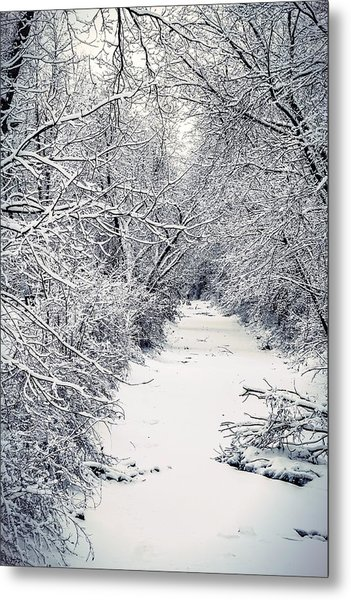 Frosted Feeder Metal Print