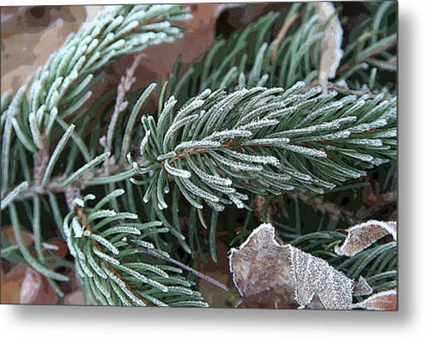 Frosty Pine Branch Metal Print