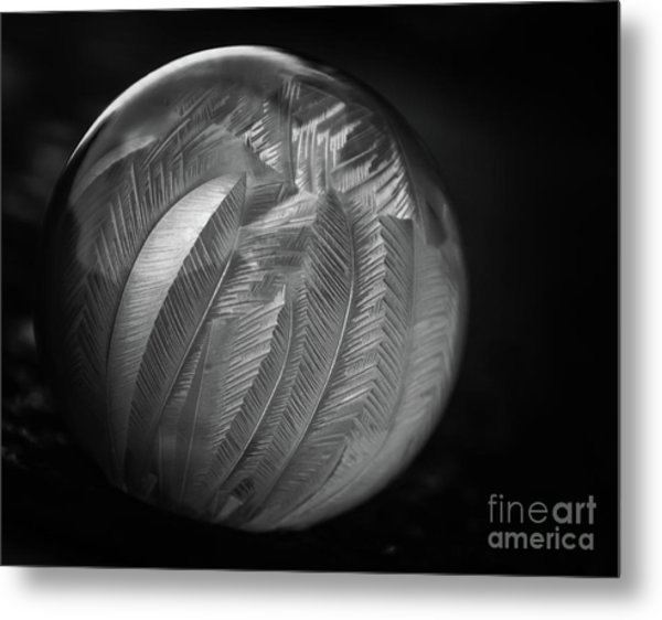 Frozen Soap Bubble - Black And White - Macro Metal Print
