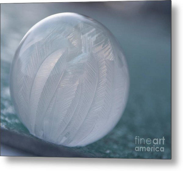 Frozen Soap Bubble -georgia Metal Print