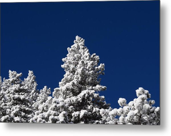 Frozen Tranquility Ute Pass Cos Co Metal Print