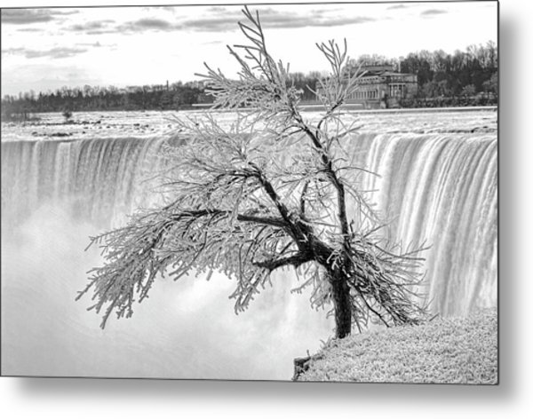 Frozen Tree Near Niagara Falls Metal Print