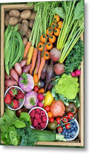 Fruit And Veg Metal Print