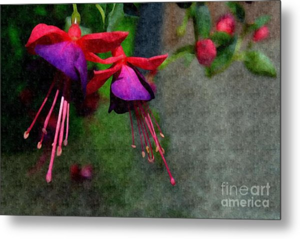 Fuchsia's Beating As One Together -silk Edit Metal Print