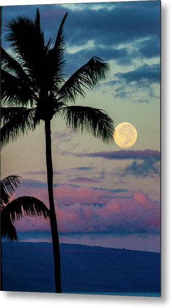 Full Moon And Palm Trees Metal Print