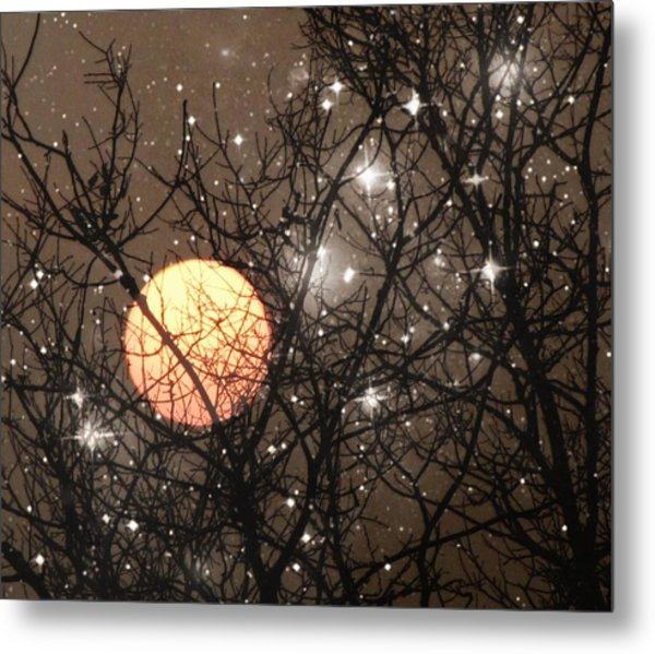 Full Moon Starry Night Metal Print
