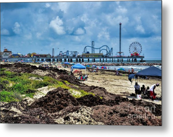 Fun On The Beach Metal Print