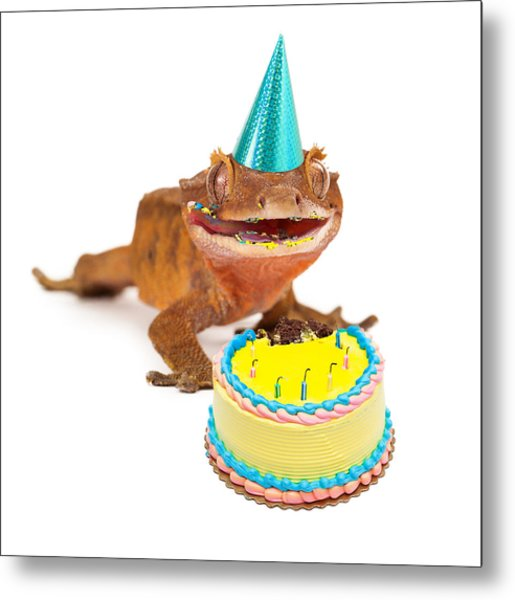 Funny Gecko Lizard Eating Birthday Cake Metal Print