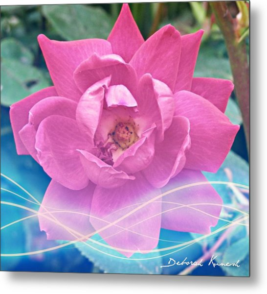 Fuschia Flower Energy Metal Print